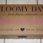 BloomyDays Karton