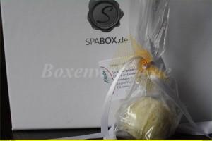 spabox 10