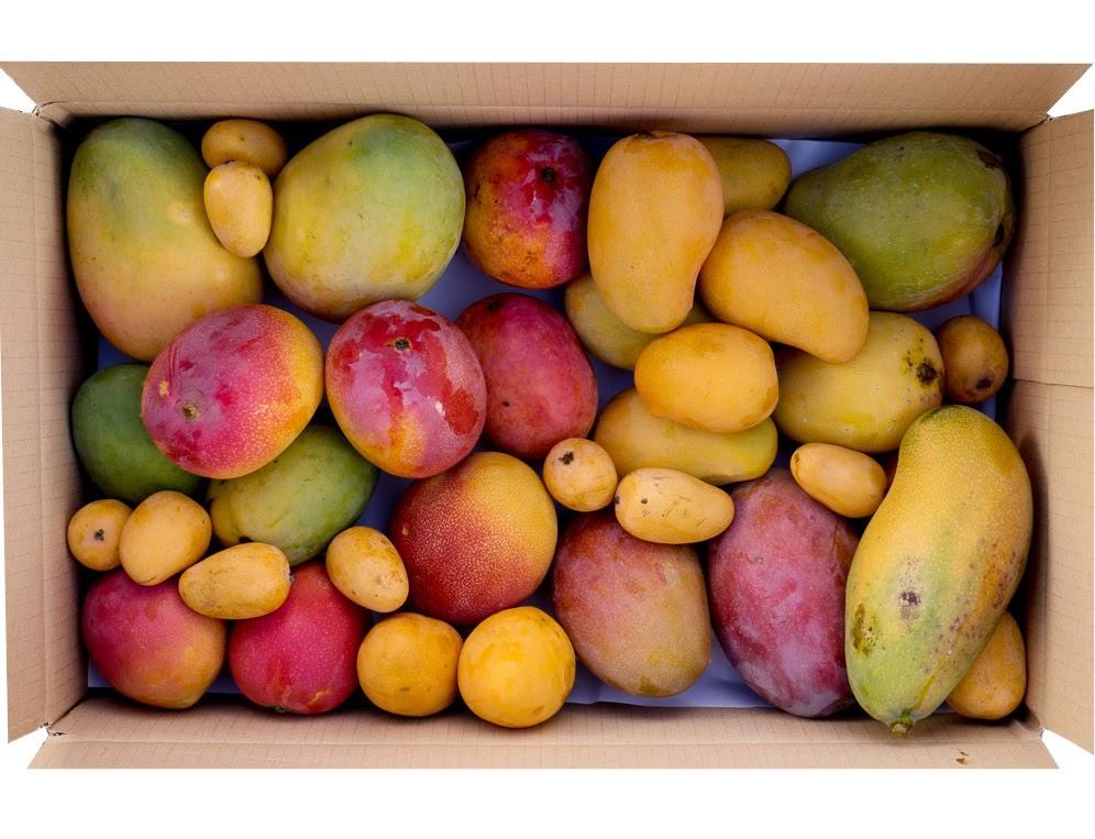 JuraГџic Fruit