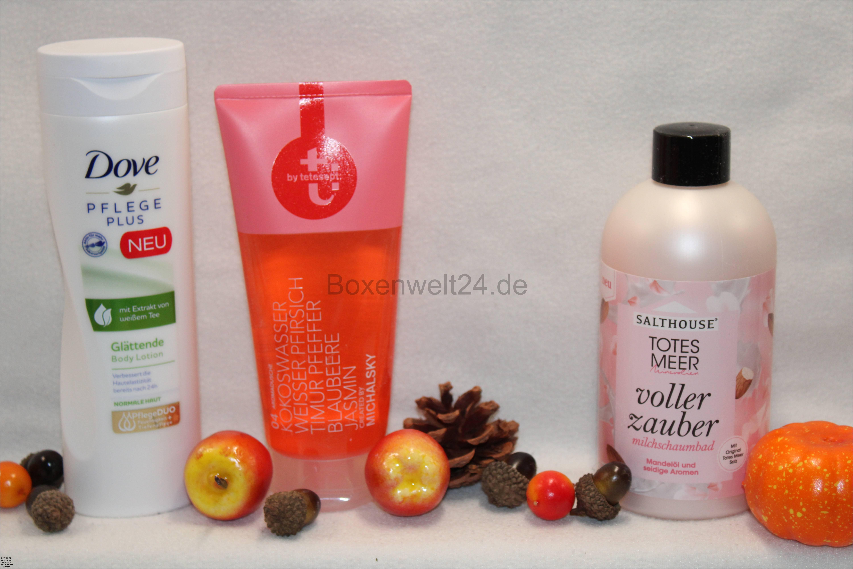 meins Box Boxenwelt24.de