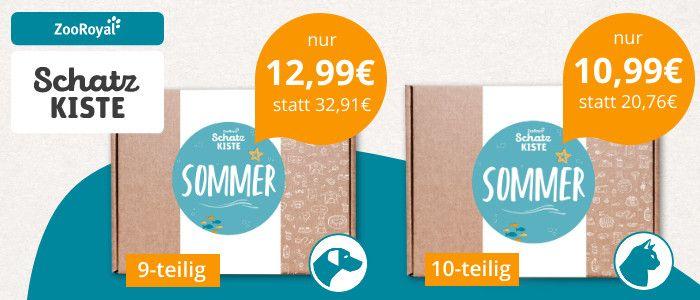 schatzkiste-sommer-700x300px